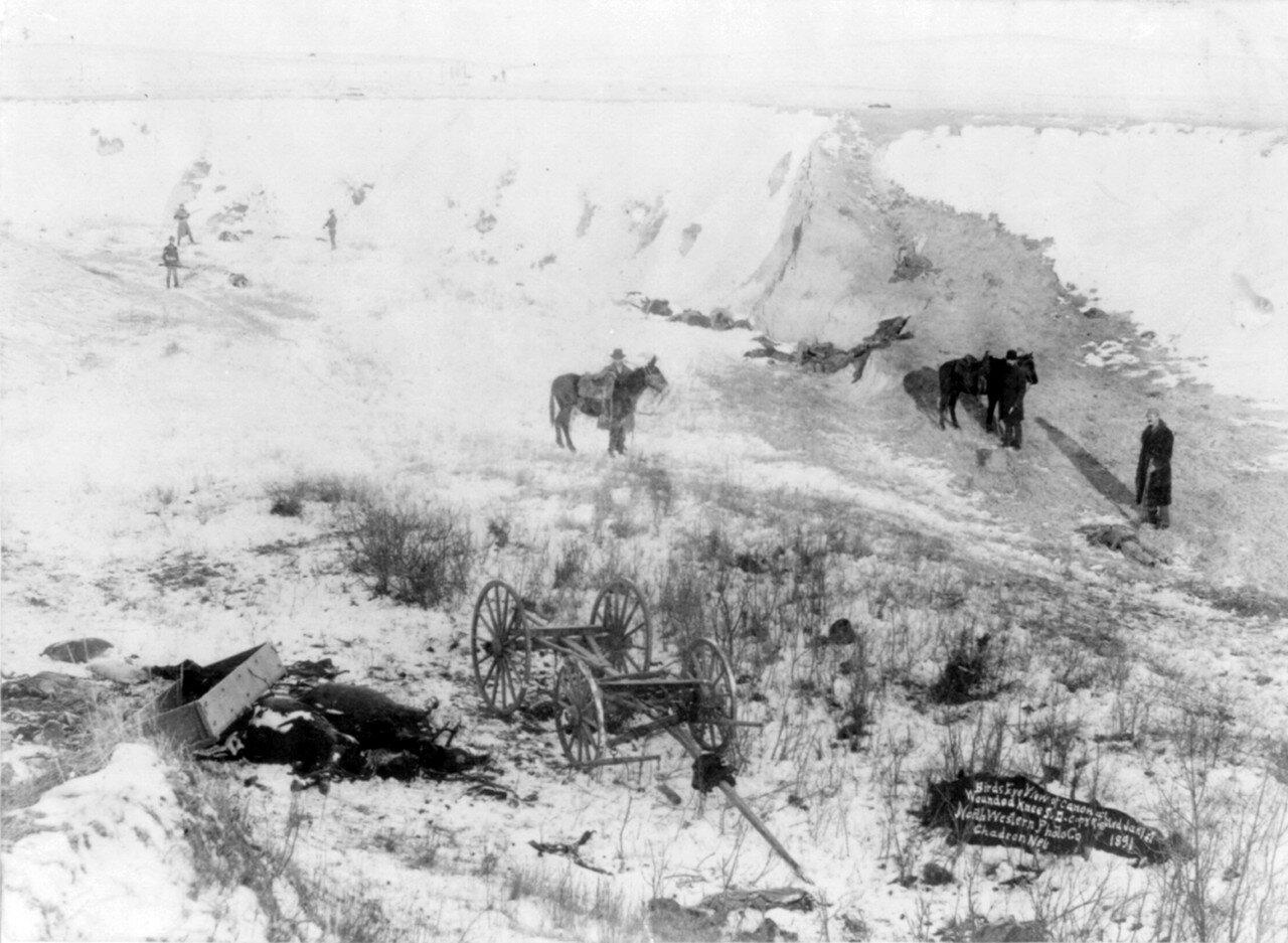 1890. Каньон Вундед-Ни. На переднем плане трупы лошадей, далее по дну оврага разбросаны тела индейцев