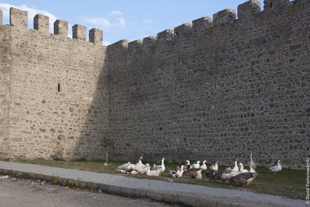 Турция, Ардаган