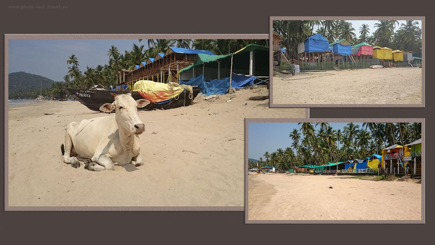 Фотография 6. Бунгало под пленкой на пляже Палолем в несезон. Отзывы туристов об отдыхе в Гоа самостоятельно. Сюда мы приехали после экскурсий по Мумбаи. (Sony D 6503, 1/2500, f2, 5mm, ISO 50)