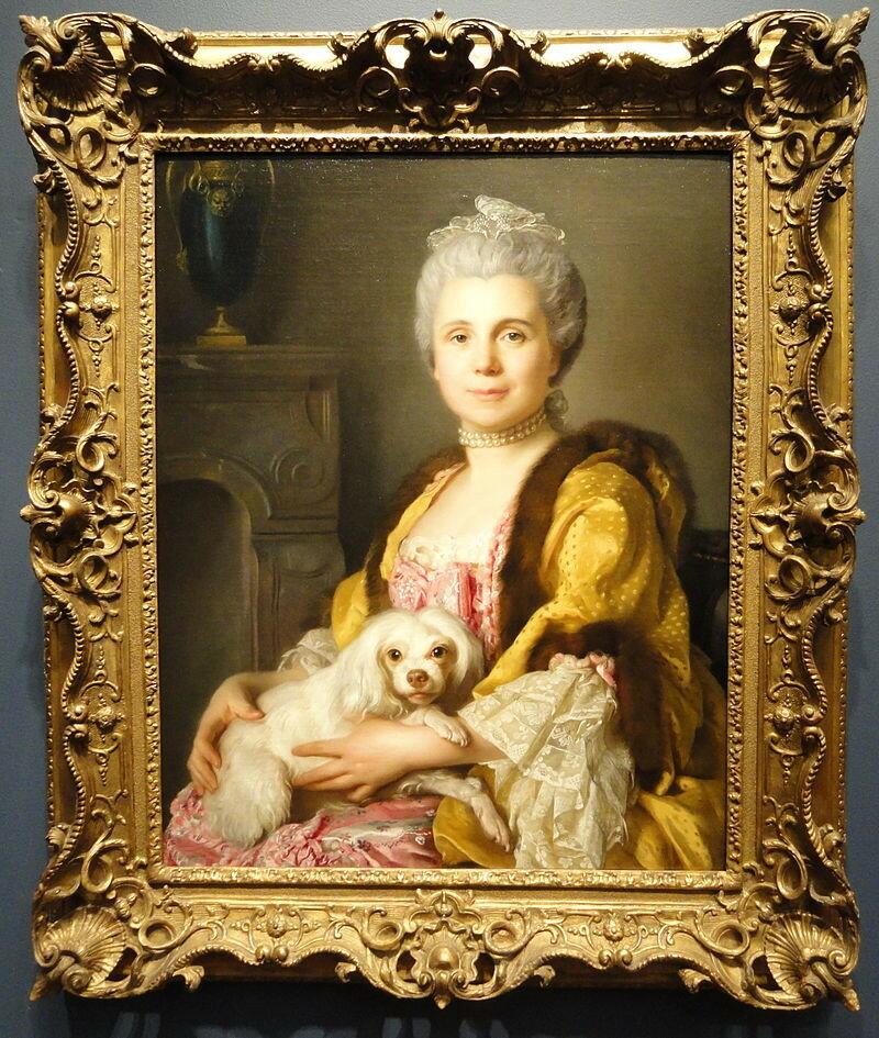 800px-Portrait_of_Madame_Freret_Dericour,_Joseph-Siffrein_Duplessis,_1769_-_Nelson-Atkins_Museum_of_Art_-_DSC08831.jpg