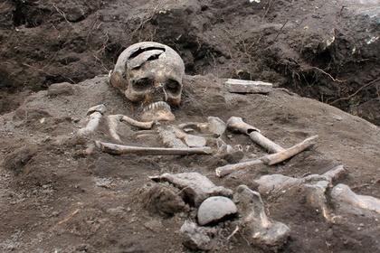 Ученые высказали предложение построить город из костей