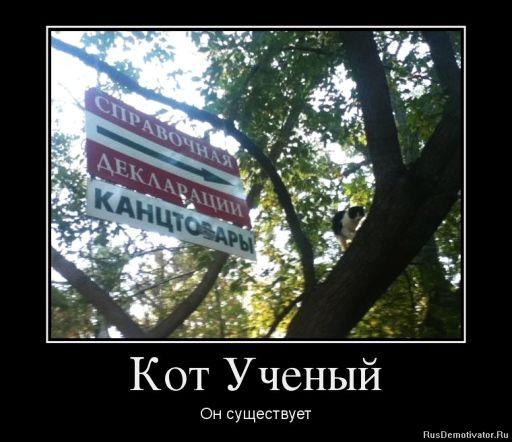 http://img-fotki.yandex.ru/get/38765/236155452.2/0_1595d1_c9552bc7_orig.jpg