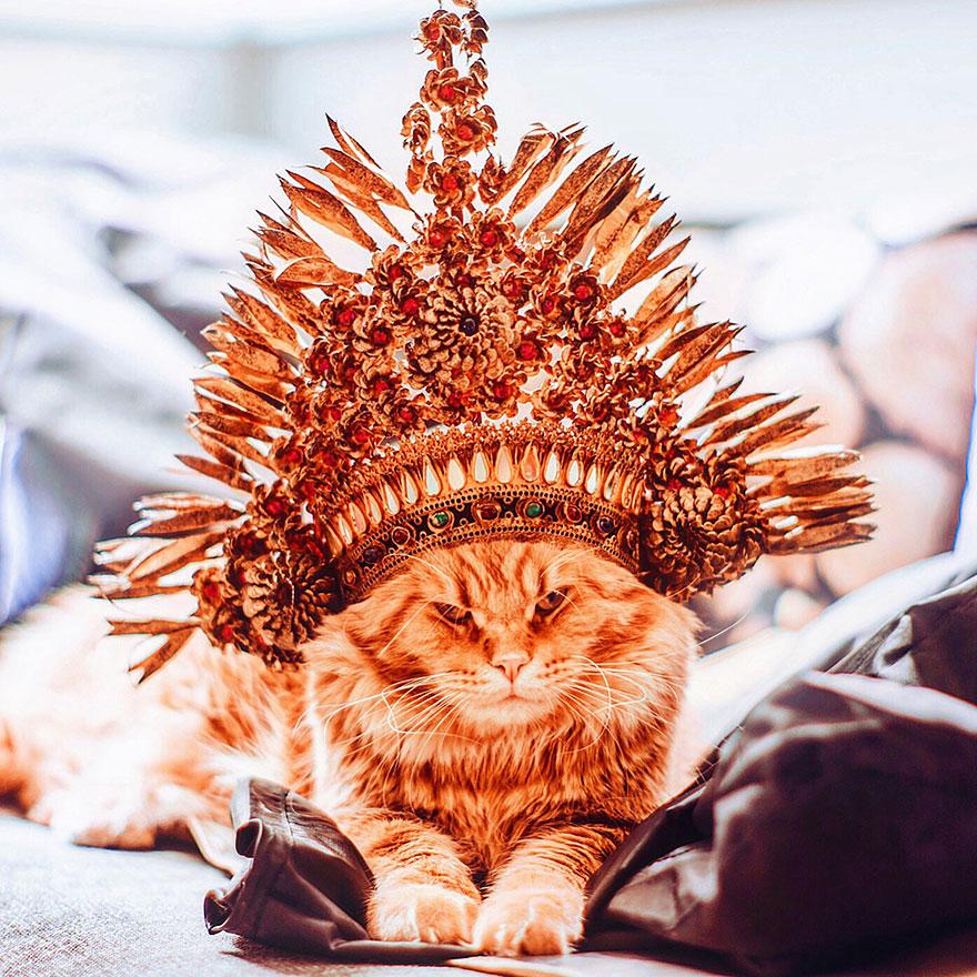 «Он вполне флегматичный кот, и это помогает мне в создании композиций. Дома он спокойно может сидеть