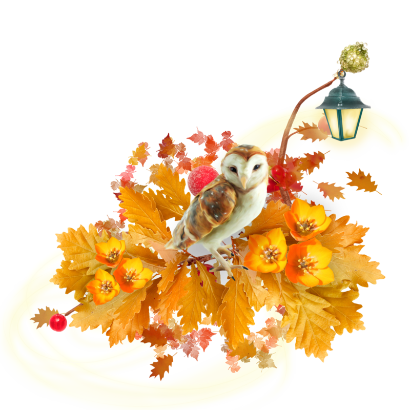 autumn clusters 5.png