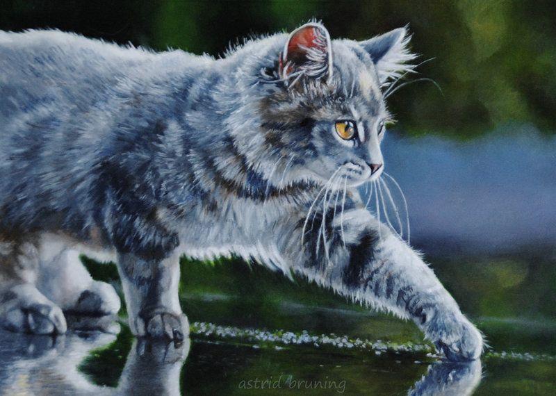 Астрид Брюнинг: красивые картины котят, котов и кошек