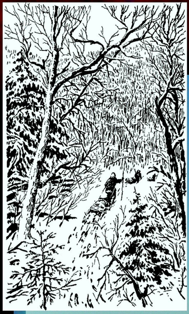 Иллюстрация к книге В.К.Арсеньева Дерсу Узала (27).jpg