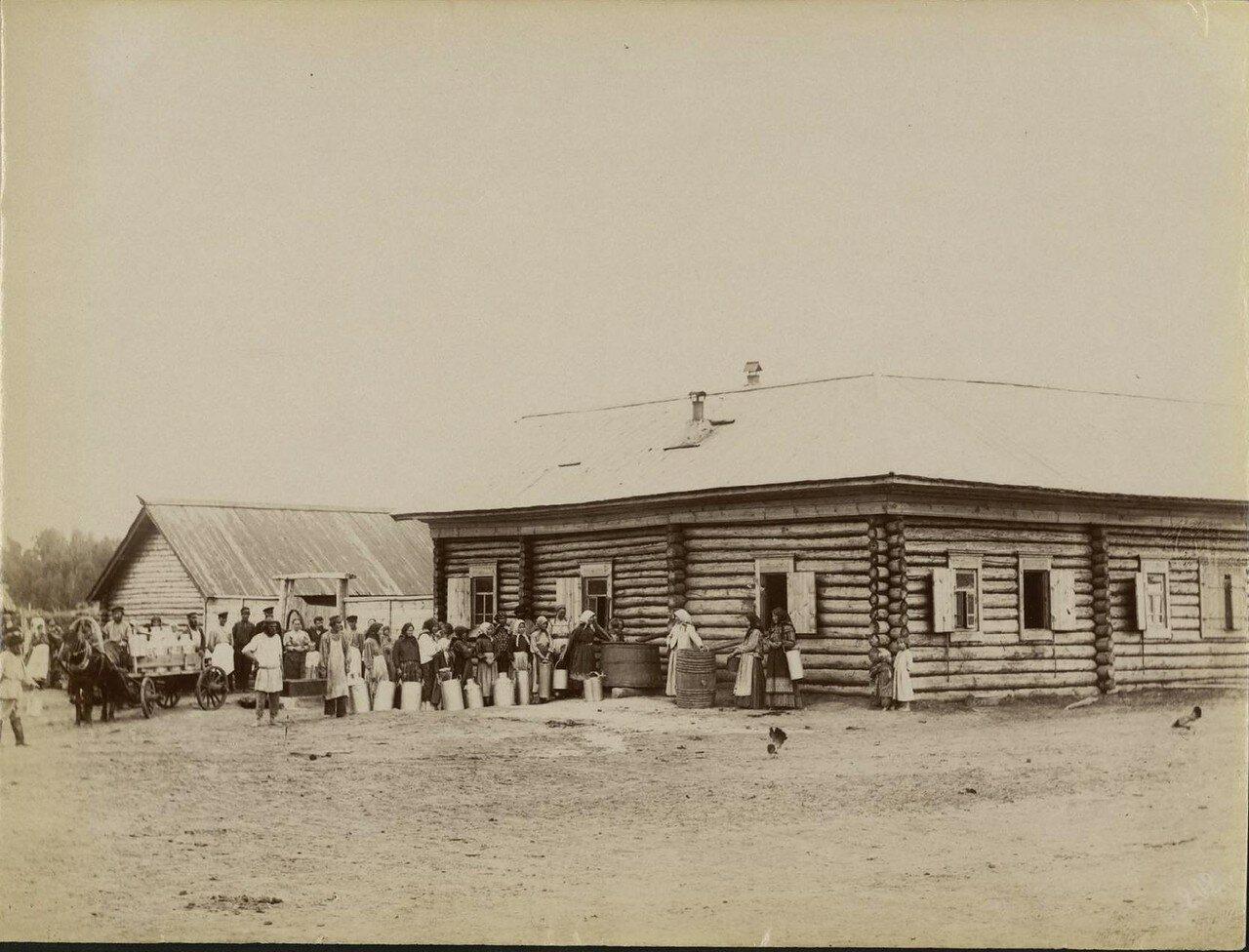 Окрестности Кургана. Торговля молоком