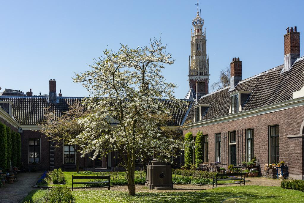 Харлем Haarlem