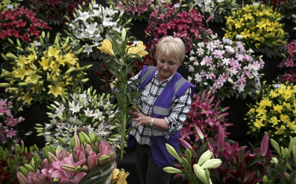 Выставка цветов в Лондоне