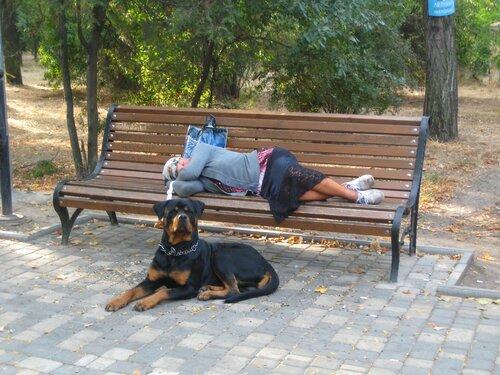 Бездомная женщина и ее охрана.