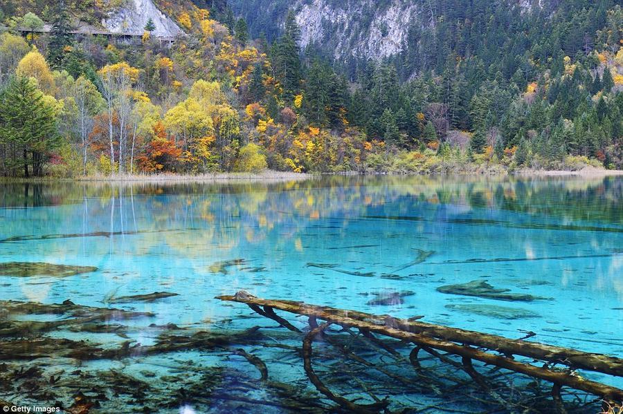 14. Озеро Пяти цветов, которое также называют озером Павлина, в заповеднике Цзючжайгоу осенью. Крист
