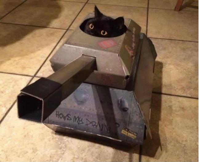 Эта фирма производит возмутительно крутые игрушки для котов (7 фото)