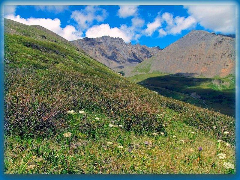 В горном Алтае, на тропах у Курайского хребта.jpg