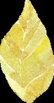 Mint&GoldElements_12.png