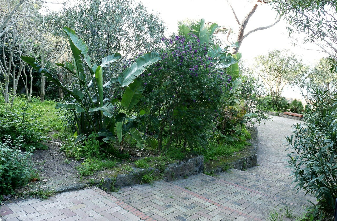 Ischia, Lacco Ameno. Negombo thermal Park