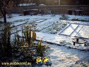 солнце на огороде