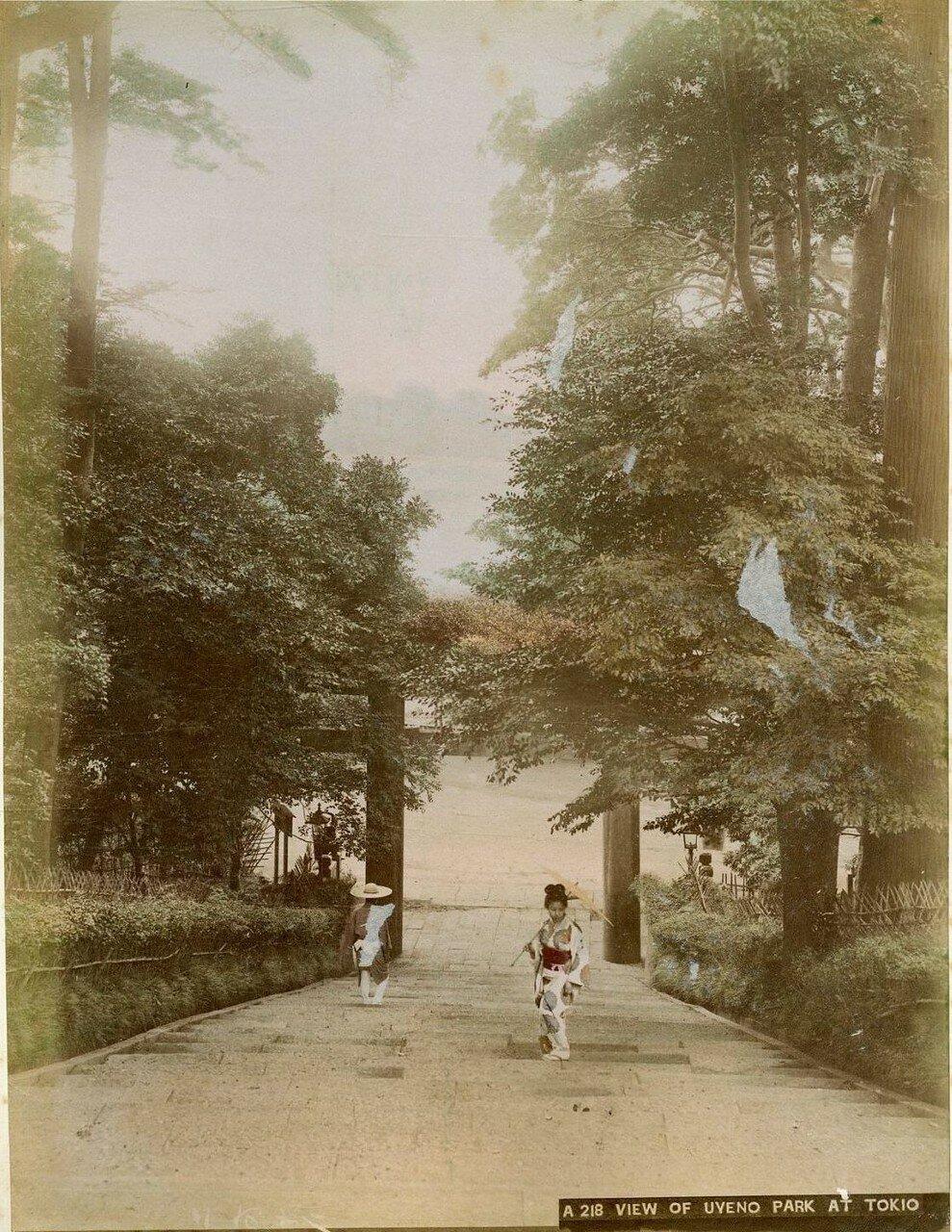 Токио. В парке Уэно