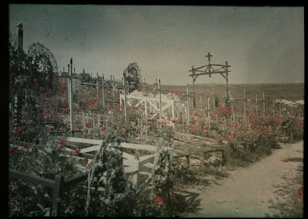 1914 - 1918. Кладбище с маками