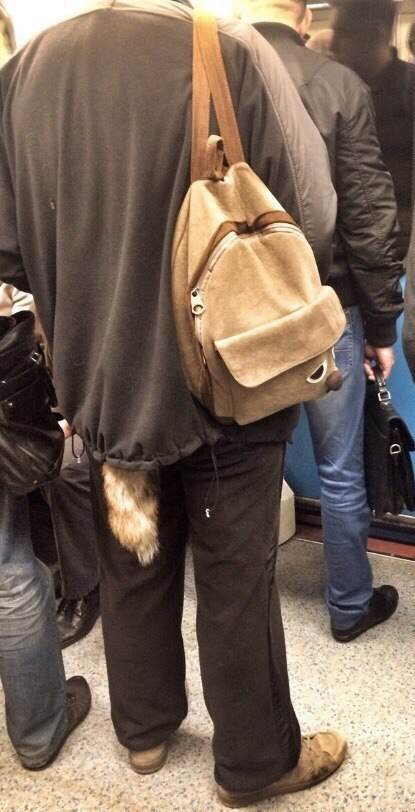 22. Пушистый хвост, едва заметно торчащий из-под куртки, намекает окружающим, что вы настоящий зверь