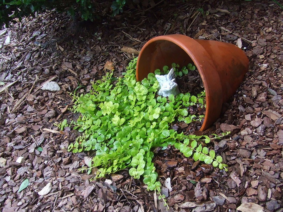 Дизайн сада своими руками из подручных материалов фото