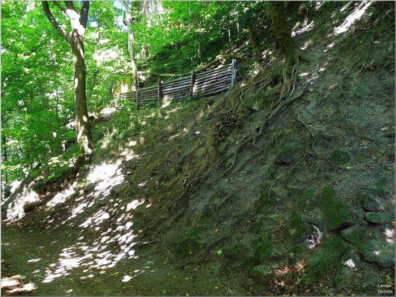 Спуск с горы к замку Драхенбург.