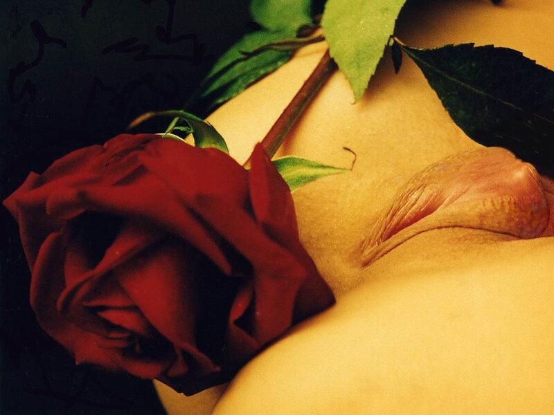 Подарки любовнице, цветы, порно