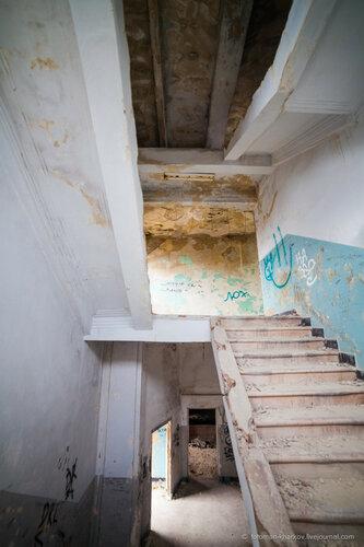Хроники триффидов: Всё, что оставляют после себя селюки- гниение и разруха