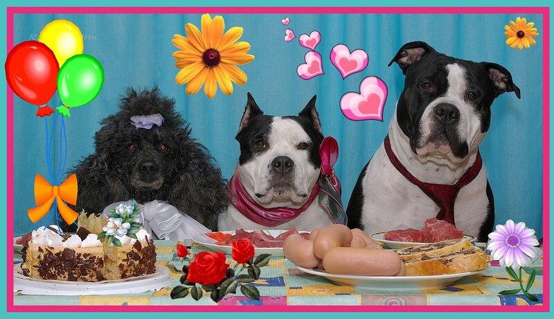 Открытка с днем рождения для ветеринара, рисунки