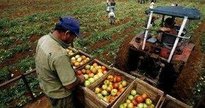 Фермеры смогут покупать топливо без посредников