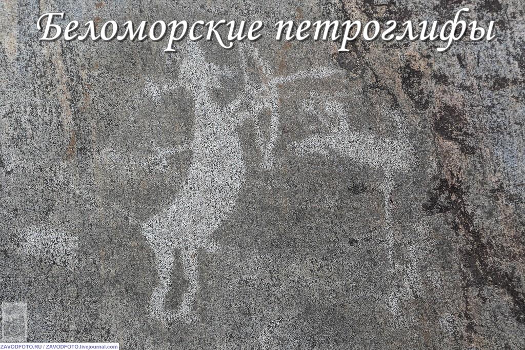 Беломорские петроглифы.jpg