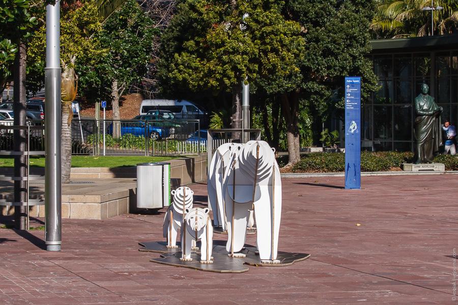 белые медведи в Окленде