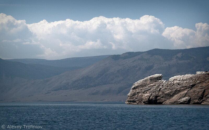 Baikal_2015_Chameleon.jpg