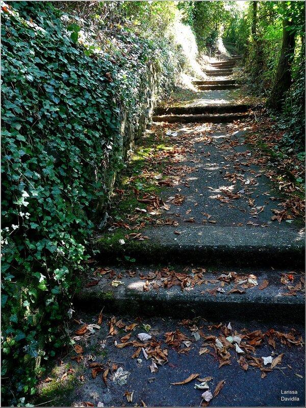 По дороге к замку Драхенфельс.