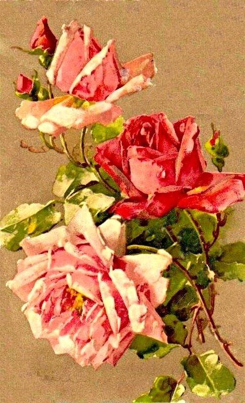 К. Кляйн. 36. Три розы три бутона.