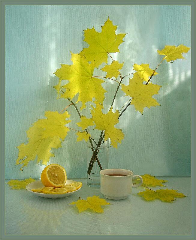 Натюрморт с кленовыми листьями