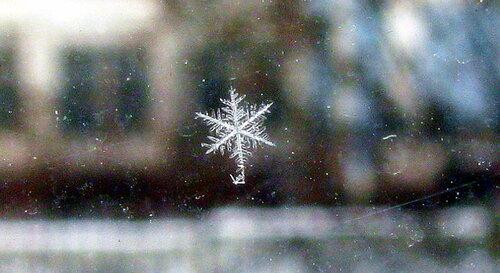 снежинка на оконном стекле