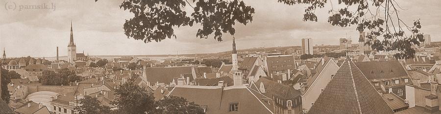 панорама6.jpg