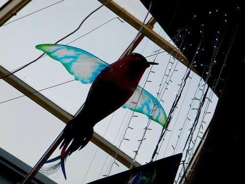 Исполинская колибри