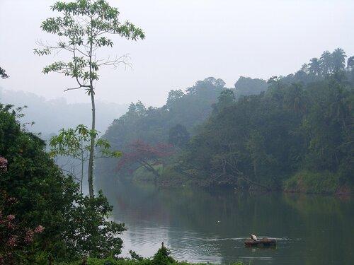 Шри-Ланка, утро на реке 2