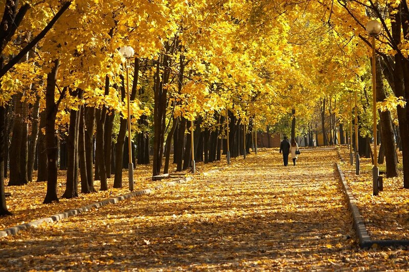 Осень уходит