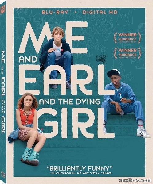 Я, Эрл и умирающая девушка / Me and Earl and the Dying Girl (2015/BDRip/HDRip)
