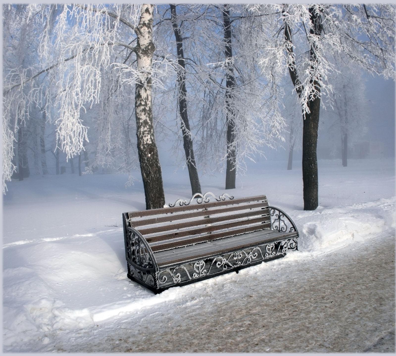 аллея, зима, мороз, романтика, свидание, скамейка, снежность, туман, холод