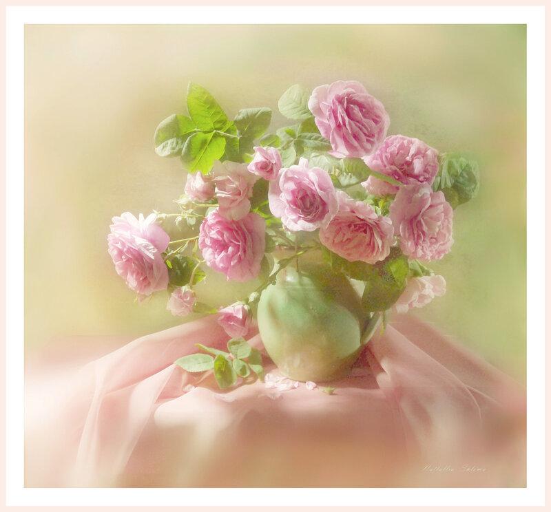 Розовые розы .