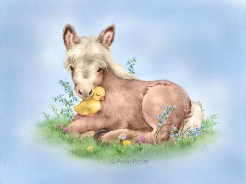 DonkeyDuck1