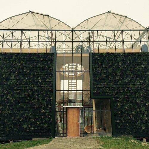 Зеленый дом - теплица