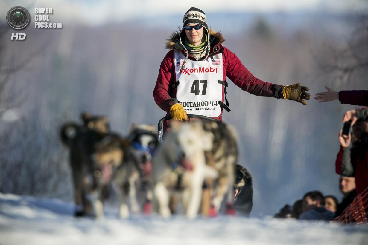 США. Уиллоу, Аляска. 2 марта. Один из пяти норвежцев, приехавших на гонку в этом году, со своей упря