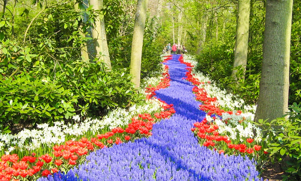 Кёкенхоф, или «Сад Европы»,— это сказочное парково-цветочное королевство, раскинувшееся наплощади