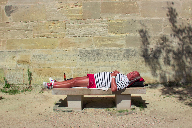 Alexandre Pruvost, France. Professional; Candid. A sunbather finds the perfect place to bask by the