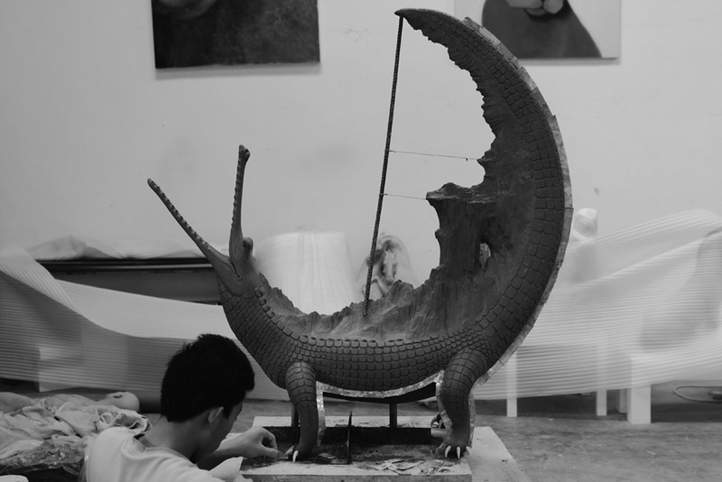 DREAMS-Crocodile, studio view.