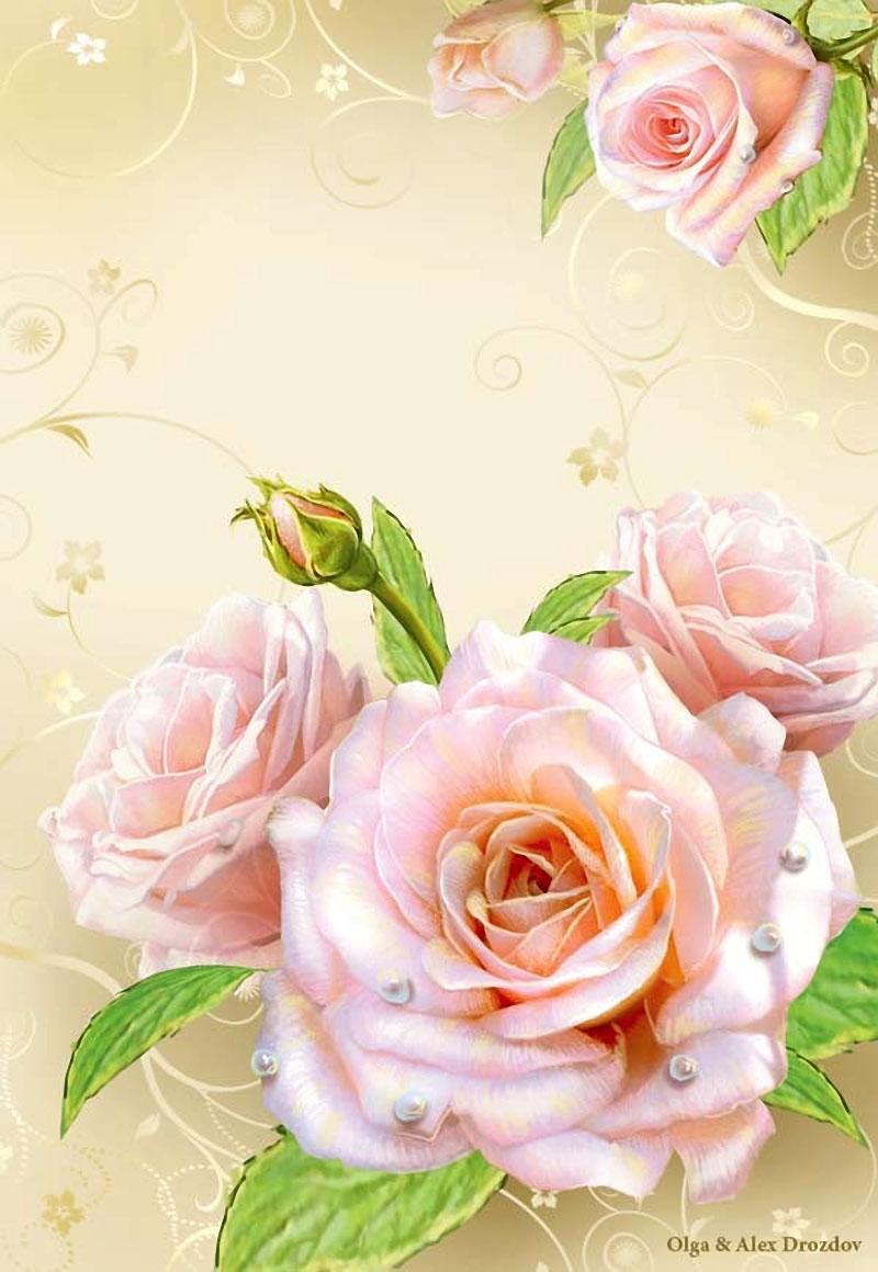 Открытки с розами для надписи